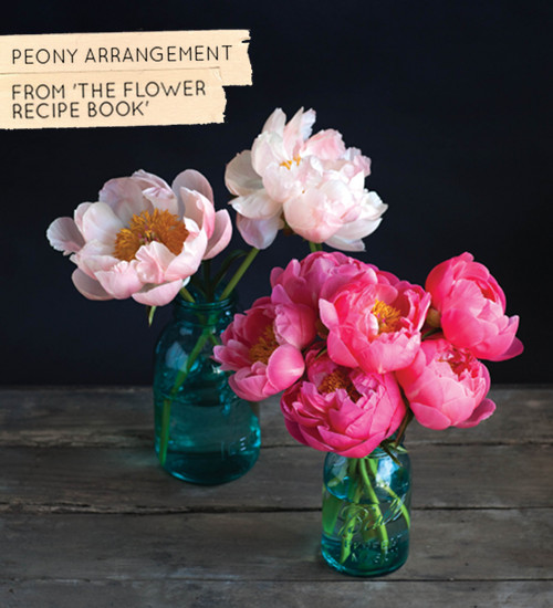 185_Peony-Recipe-1-On-Its-Own