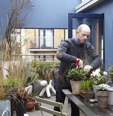 5. A rooftop garden in a hip Dublin 8 apartment.