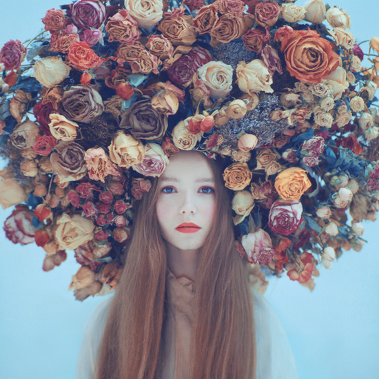 Feastly flower phtography on oprisco.com